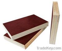 Sell Veneer Plywood