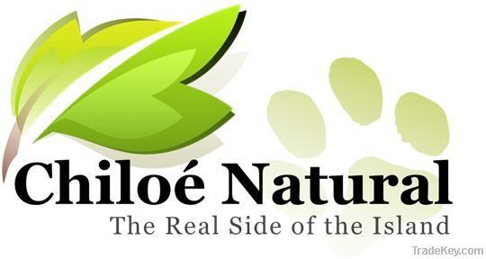 logo logo 标志 设计 矢量 矢量图 素材 图标 540_288