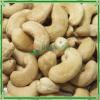 Cashew Nuts SW240