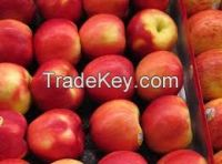 Fresh Citrus fruits apples....